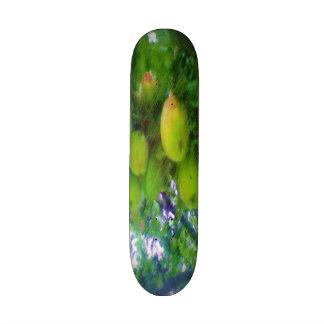 Apples on a tree skateboard deck