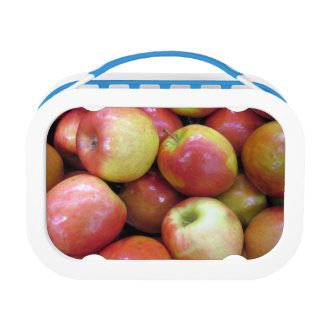 Apples Yubo LUnchbox, Blue Lunchboxes