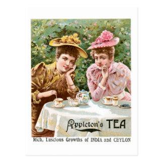 Appleton's Tea Vintage Drink Ad Art Postcard