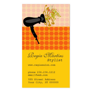 Appointment Adorable Salon Hair Stylist Dryer Pack Of Standard Business Cards