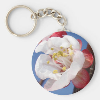 Apricot Blossom Basic Round Button Key Ring