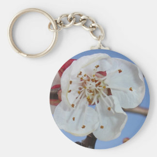 Apricot Blossom Macro Basic Round Button Key Ring