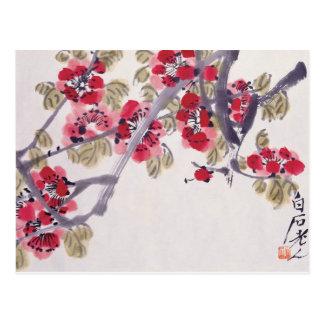 Apricot Blossoms Postcard