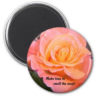 Apricot Rose 6 Cm Round Magnet
