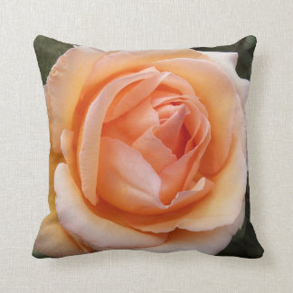 Apricot Rose Floral Cushion
