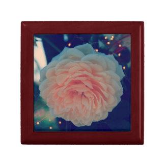Apricot Rose Gift Box