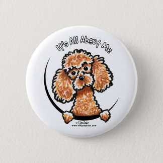 Apricot Toy Miniature Poodle IAAM 6 Cm Round Badge