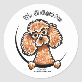 Apricot Toy Miniature Poodle IAAM Round Sticker