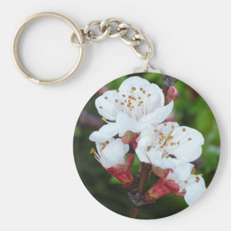 Apricot Tree Basic Round Button Key Ring