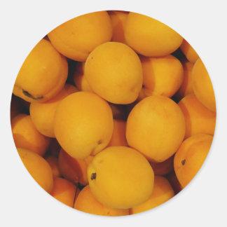 Apricots Classic Round Sticker