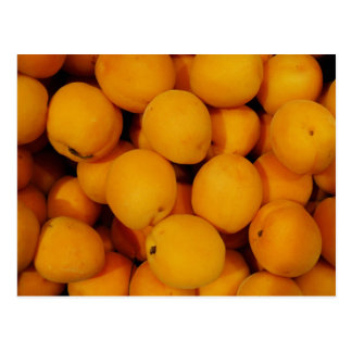Apricots Post Card