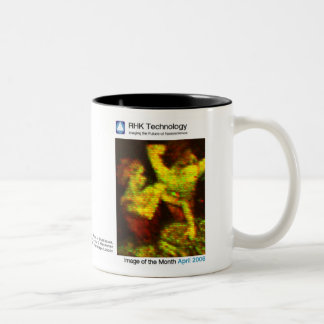 April 2006 - RHK Technology: Image of the Month Two-Tone Coffee Mug
