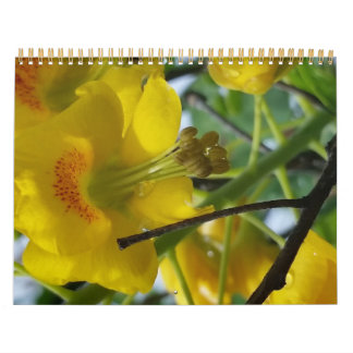 April 2015 to March 2016 one color flower Calendars