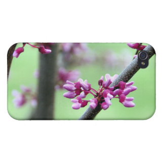 April Redbud 4 iPhone 4 Case