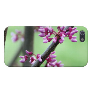 April Redbud 4 iPhone 5/5S Case