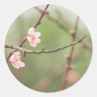 April Round Sticker