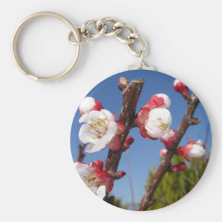 April's Blossom Basic Round Button Key Ring