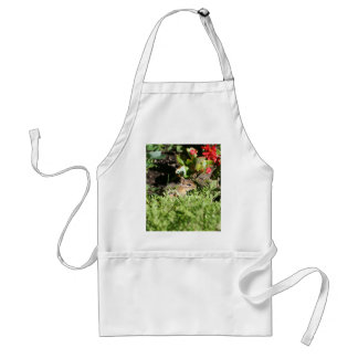 apron with photo of cute chipmunk