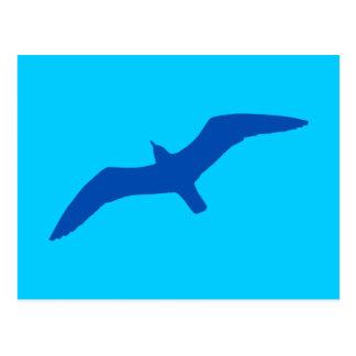 Aqua Blue Gull Postcard