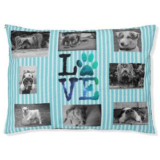 Aqua Blue  Paw Love Dog Bed