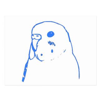 Aqua Budgie Portrait Postcard