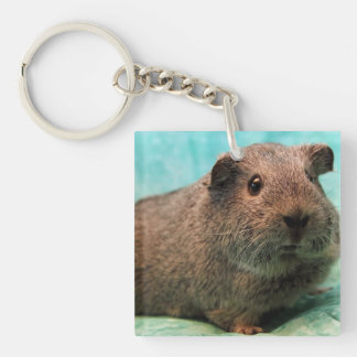 Aqua Guinea Pig Keychain Double-Sided Square Acrylic Keychain