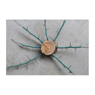 Aqua Jute & Wood Nature String Art Centered