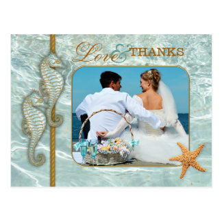 Aqua Seahorse Wedding Photo Thank You Postcard