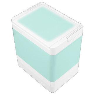 Aquamarine Igloo Cooler