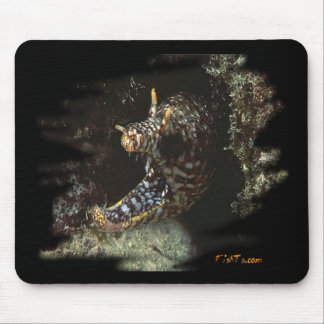 Aquarium Collection by FishTs com Mouse Mat