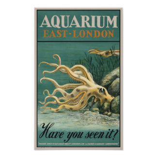 Aquarium, East London- Octopus Poster