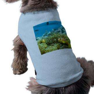 Aquarium Fish Dog Tee