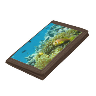 Aquarium Fish Tri-fold Wallet