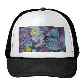 Aquarium Hats