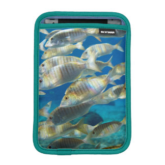 Aquarium In Ushaka Marine World, Durban iPad Mini Sleeve