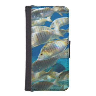 Aquarium In Ushaka Marine World, Durban iPhone SE/5/5s Wallet Case