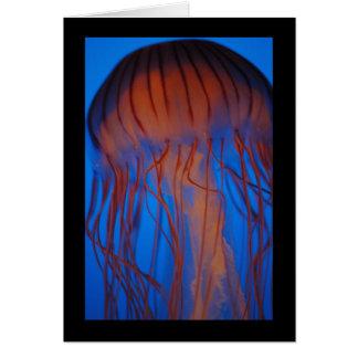 Aquarium Jellyfish Card