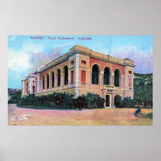 Aquarium, Napoli Naples Italy 1915 Vintage Poster