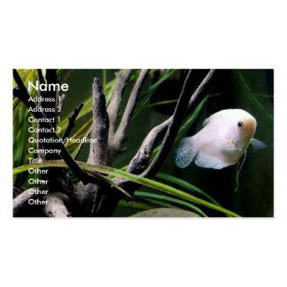 Aquarium Profile Cards Business Cards
