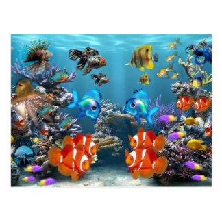 Aquarium Sealife Style Postcard