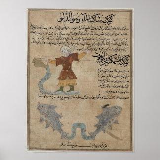 Aquarius and Pisces Poster