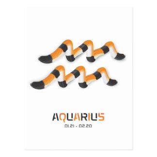 """Aquarius in  Tiger's Style"". Postcard"