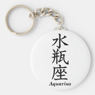 Aquarius Key Ring