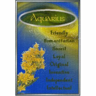 Aquarius Photo Sculpture Key Ring