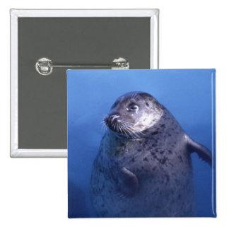 Aquatic 15 Cm Square Badge