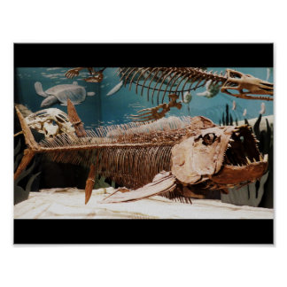 Aquatic Dino Poster