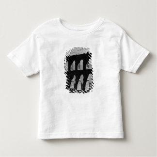 Aqueduct at Rio Toddler T-Shirt