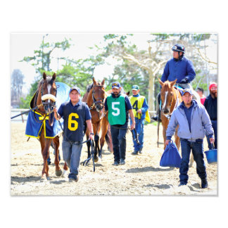 Aqueduct's Top Horses heading to the Paddock Photograph