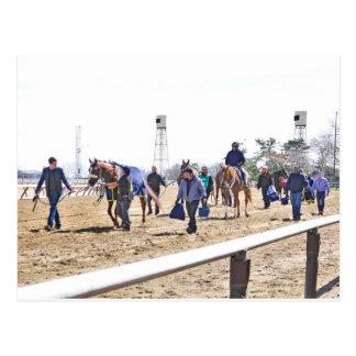 Aqueduct's Top Horses heading to the Paddock Postcard