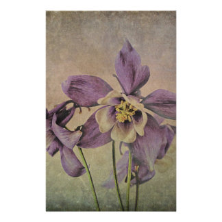 Aquilegia Delicate Textured . Stationery